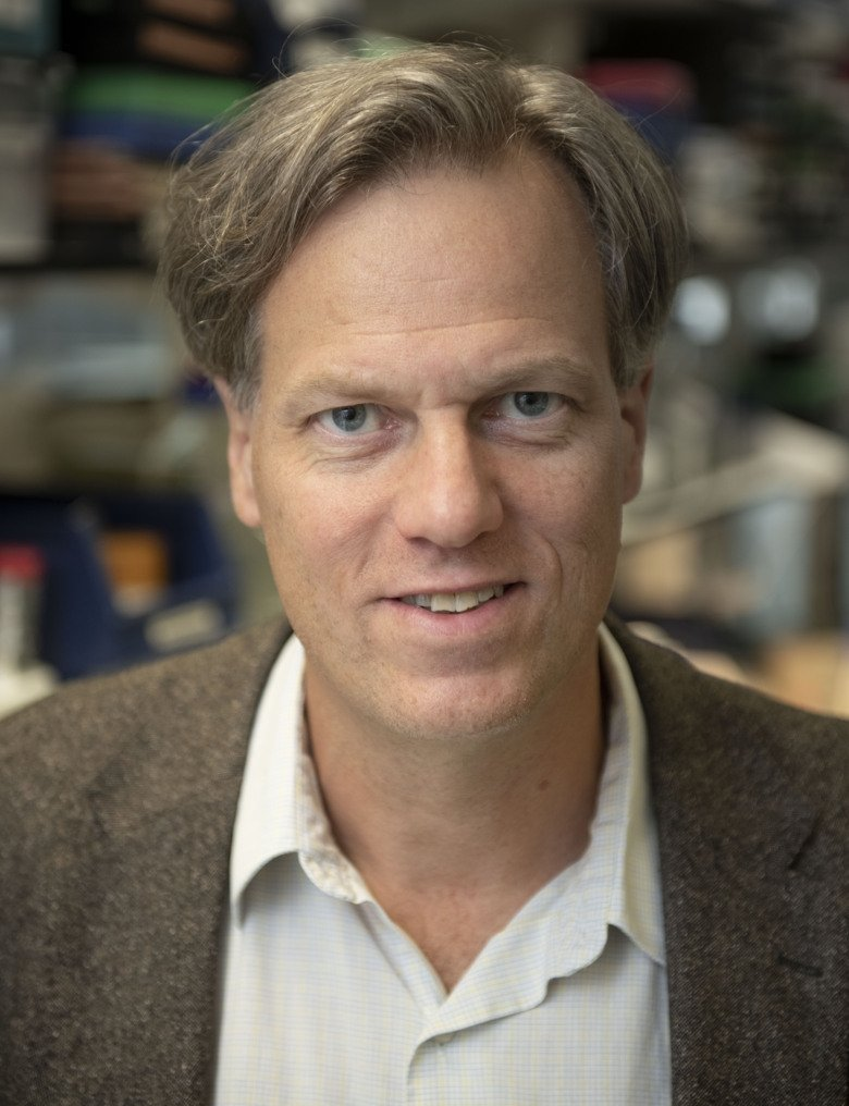 Portrait photo of Per Svenningsson, professor at the Department of Clinical Neuroscience