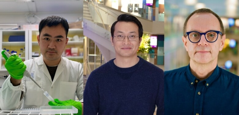Three researchers, portrait photos
