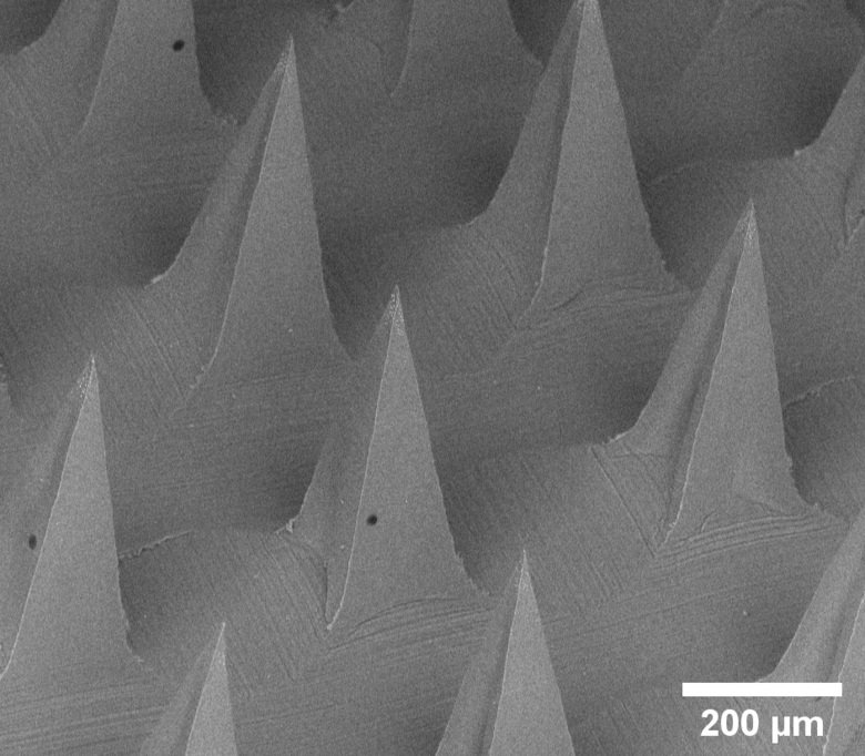 Zooming in on the microneedles
