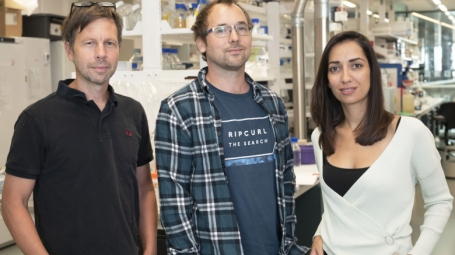 Three researchers in their lab.