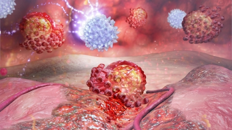 Illustration of T cells fighting virus